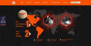 paginas-web-aguascalientes-relief-19